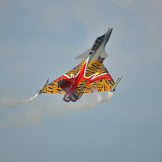 BELGIAN AIR FORCE DAYS 2014
