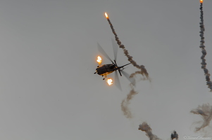 A-019 Belgium Display